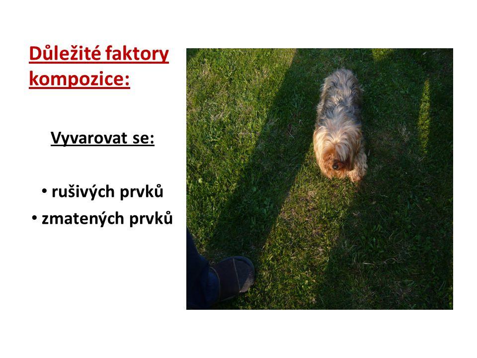 Zopakujte si.1. Kompozice obrazu je: a)Souhrn fotografií b)Rámování c)Konečná úprava 2.
