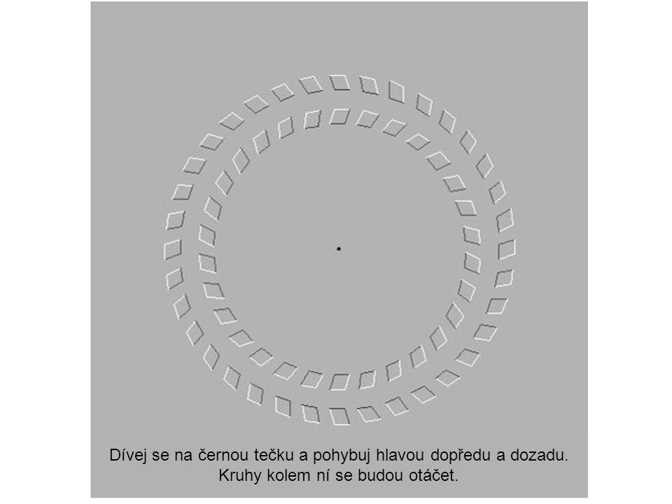Dívej se na černou tečku a pohybuj hlavou dopředu a dozadu. Kruhy kolem ní se budou otáčet.