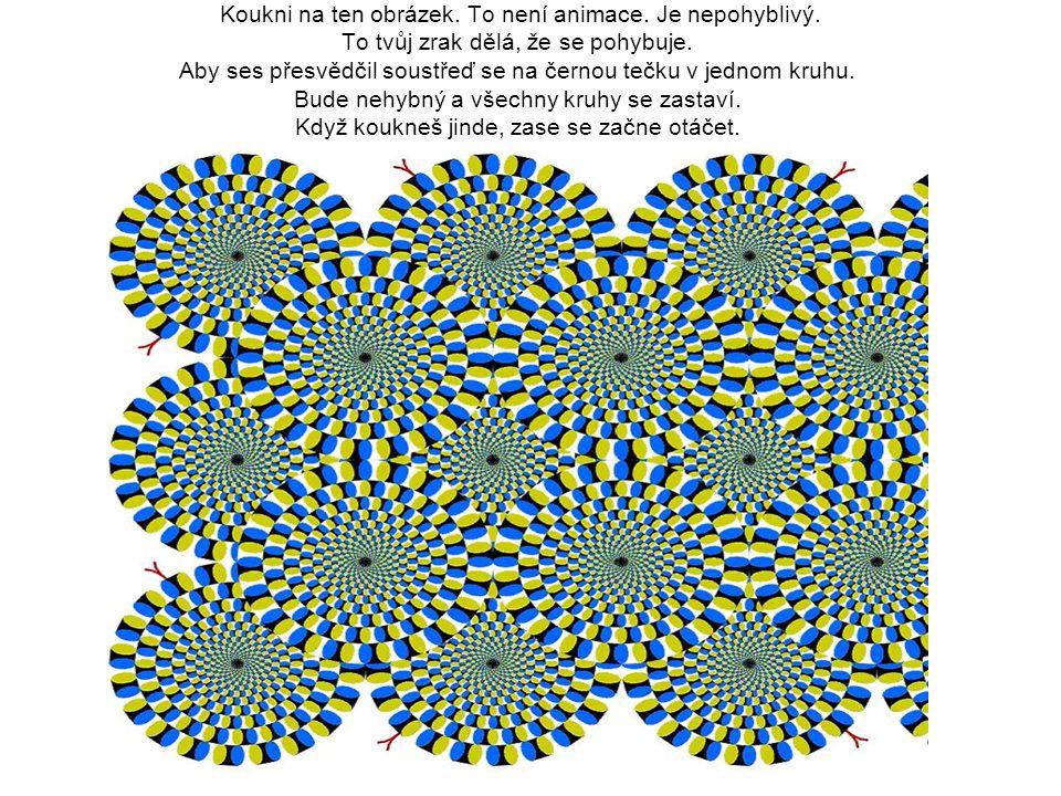 Koukni na ten obrázek. To není animace. Je nepohyblivý. To tvůj zrak dělá, že se pohybuje. Aby ses přesvědčil soustřeď se na černou tečku v jednom kru