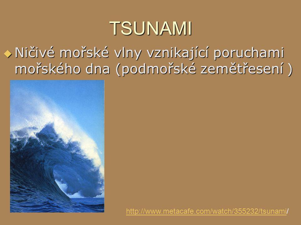 TSUNAMI  Ničivé mořské vlny vznikající poruchami mořského dna (podmořské zemětřesení ) http://www.metacafe.com/watch/355232/tsunamihttp://www.metacaf