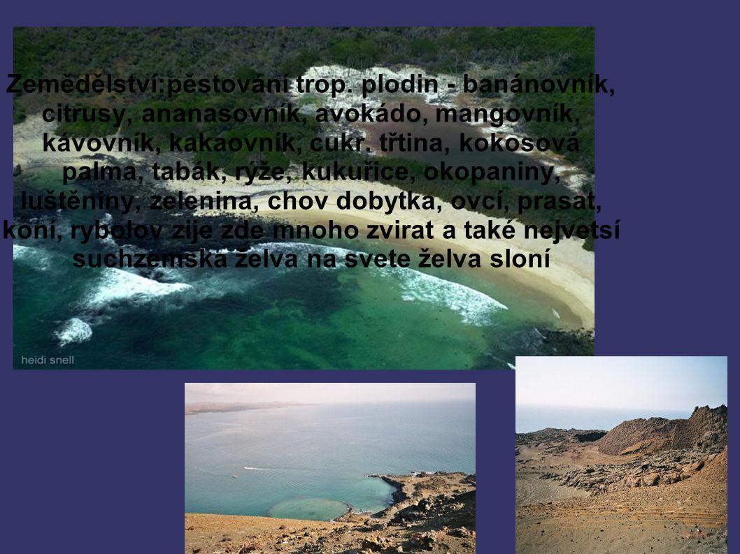 Shrnutí ➲ Souostrový Galapágy ➲ Leží uprostřed Tichého Oceánu ➲ Se skládá ze 13 sopečných ostrovů ostrovů 5 jich je již obydleno ➲ Rozloha 7844 km čtverečních ➲ Mají 90°z.d a 1°j.š