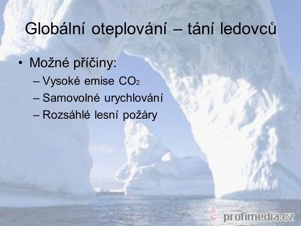 Globální oteplování – tání ledovců Možné příčiny: –Vysoké emise CO 2 –Samovolné urychlování –Rozsáhlé lesní požáry