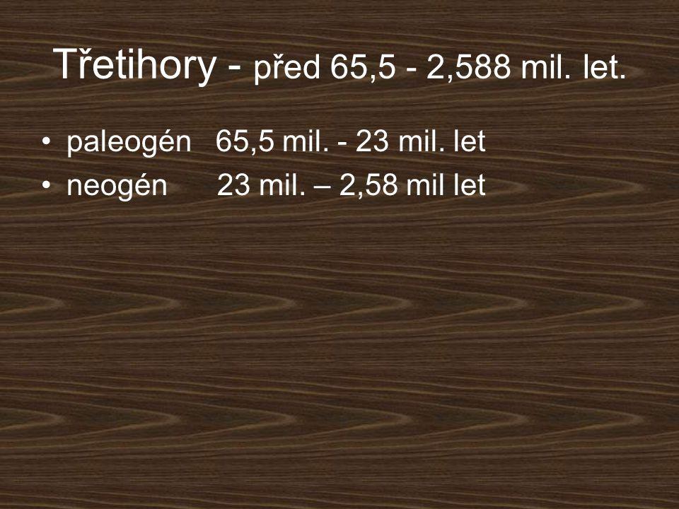 Třetihory - před 65,5 - 2,588 mil. let. paleogén 65,5 mil. - 23 mil. let neogén 23 mil. – 2,58 mil let