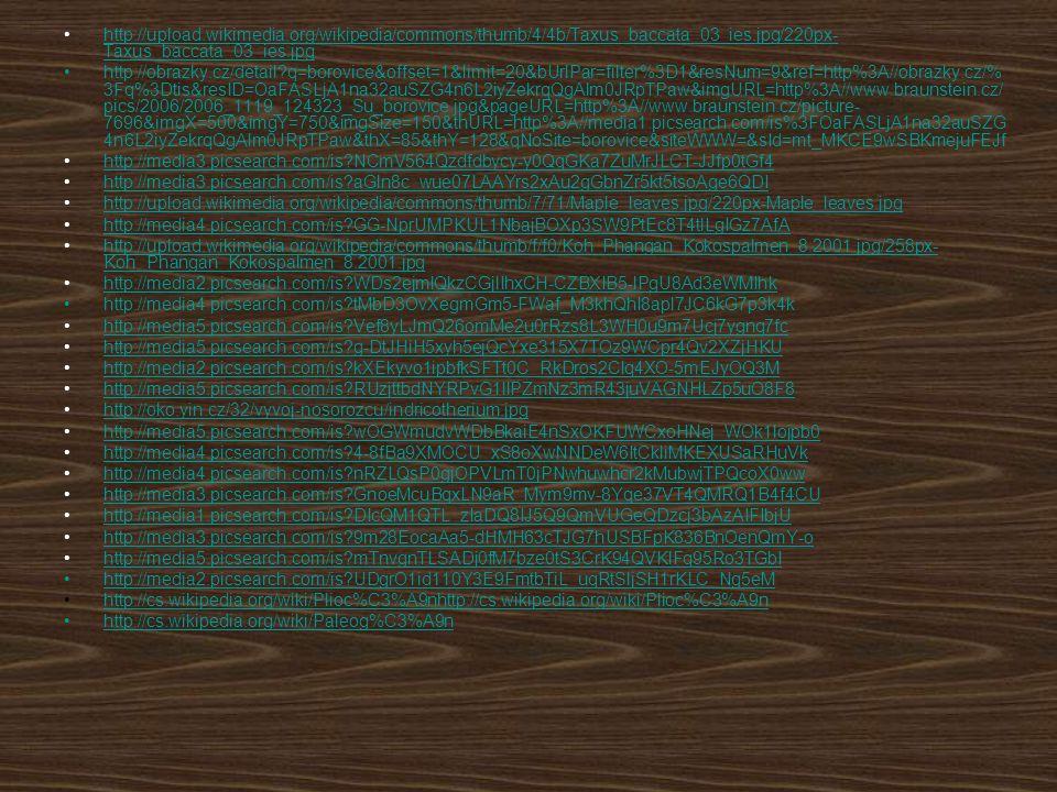 http://upload.wikimedia.org/wikipedia/commons/thumb/4/4b/Taxus_baccata_03_ies.jpg/220px- Taxus_baccata_03_ies.jpghttp://upload.wikimedia.org/wikipedia