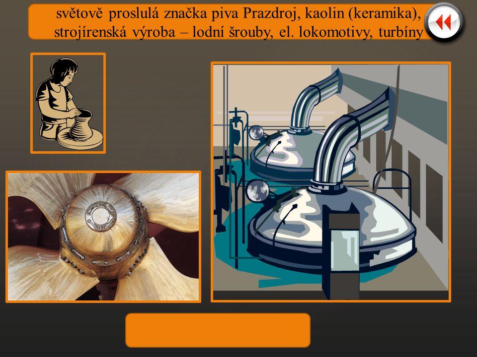 světově proslulá značka piva Prazdroj, kaolin (keramika), strojírenská výroba – lodní šrouby, el.