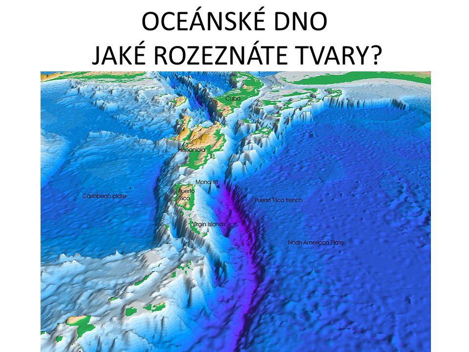 OCEÁNSKÉ DNO JAKÉ ROZEZNÁTE TVARY?