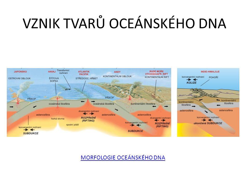 VZNIK TVARŮ OCEÁNSKÉHO DNA MORFOLOGIE OCEÁNSKÉHO DNA