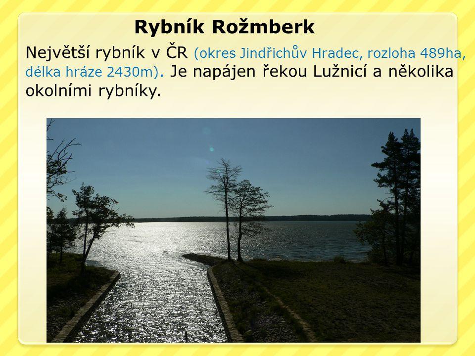 Rybník Rožmberk Největší rybník v ČR (okres Jindřichův Hradec, rozloha 489ha, délka hráze 2430m). Je napájen řekou Lužnicí a několika okolními rybníky