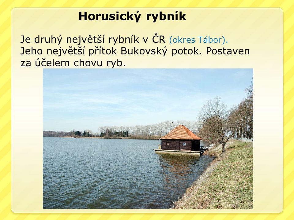 Horusický rybník Je druhý největší rybník v ČR (okres Tábor). Jeho největší přítok Bukovský potok. Postaven za účelem chovu ryb.