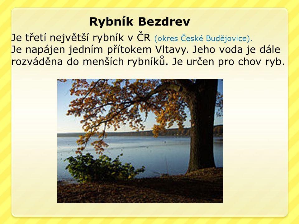 Rybník Bezdrev Je třetí největší rybník v ČR (okres České Budějovice). Je napájen jedním přítokem Vltavy. Jeho voda je dále rozváděna do menších rybní