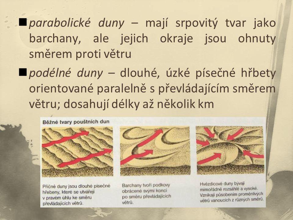 parabolické duny – mají srpovitý tvar jako barchany, ale jejich okraje jsou ohnuty směrem proti větru podélné duny – dlouhé, úzké písečné hřbety orientované paralelně s převládajícím směrem větru; dosahují délky až několik km