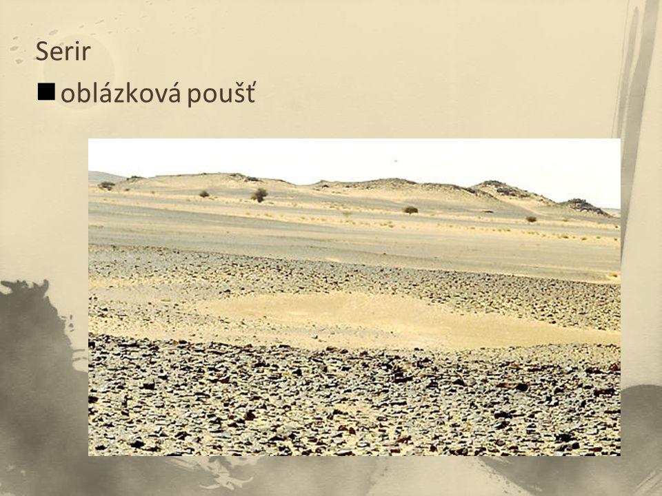 Serir oblázková poušť
