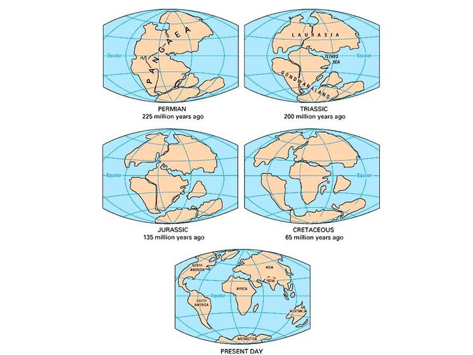 """Důkazy pohybu litosférických desek  vlastní pohyb desek zjištěný pomocí GPS a satelitního pozorování  tvary kontinentů – """"zapadají do sebe  nálezy zkamenělin"""