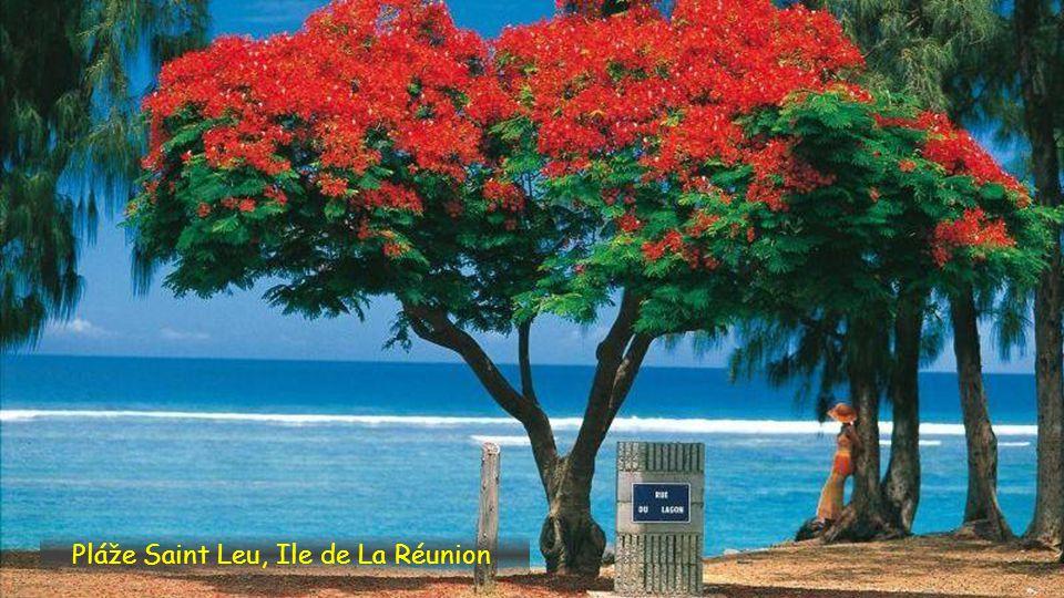 Pláže Boucan Canot, île de la Réunion