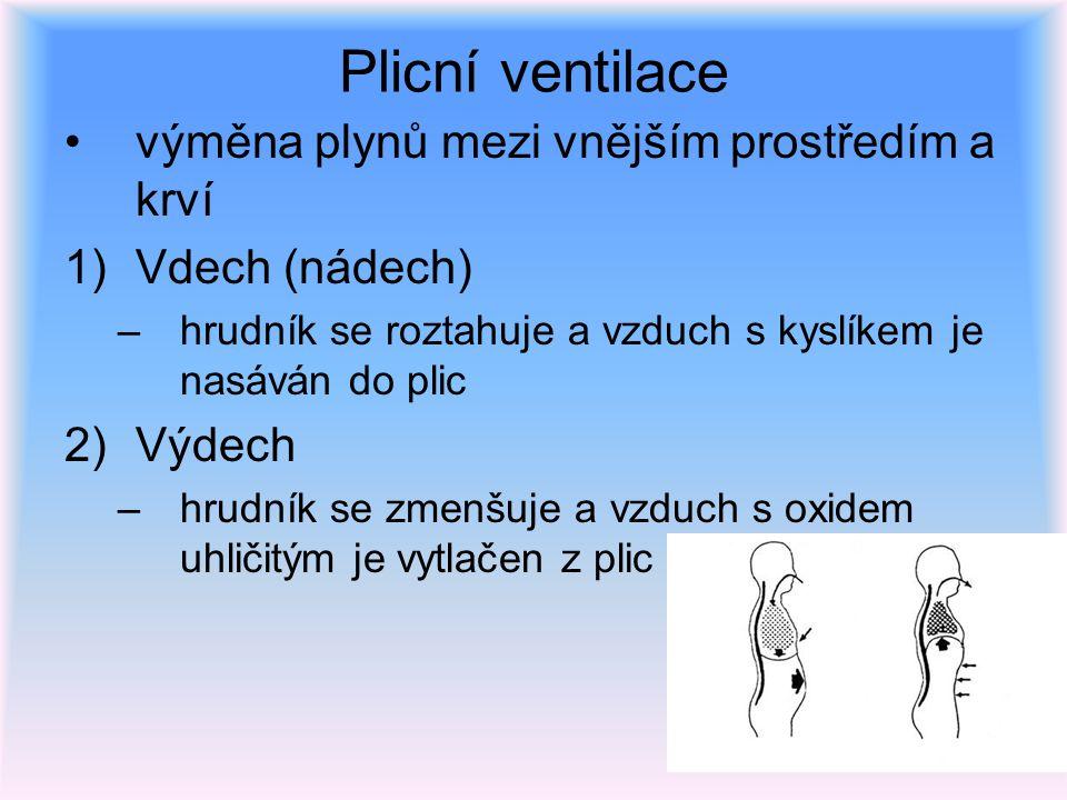 Plicní ventilace výměna plynů mezi vnějším prostředím a krví 1)Vdech (nádech) –hrudník se roztahuje a vzduch s kyslíkem je nasáván do plic 2)Výdech –h