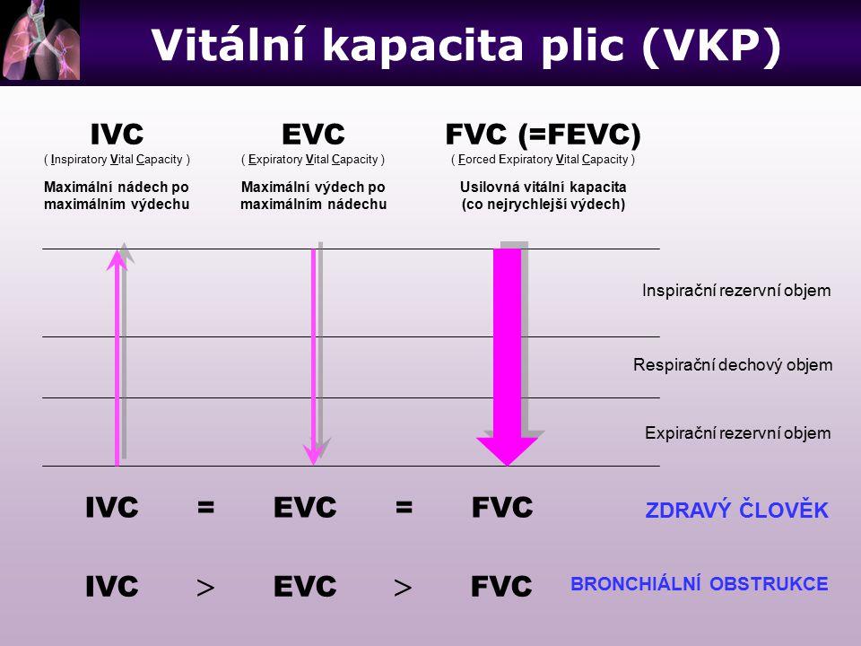 IVC ( Inspiratory Vital Capacity ) Maximální nádech po maximálním výdechu EVC ( Expiratory Vital Capacity ) Maximální výdech po maximálním nádechu FVC