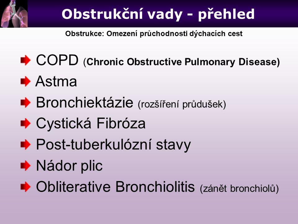 COPD (Chronic Obstructive Pulmonary Disease) Astma Bronchiektázie (rozšíření průdušek) Cystická Fibróza Post-tuberkulózní stavy Nádor plic Obliterativ