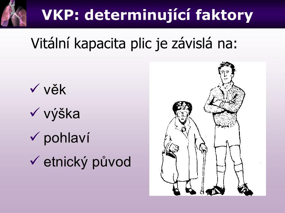 věk výška pohlaví etnický původ Vitální kapacita plic je závislá na: VKP: determinující faktory
