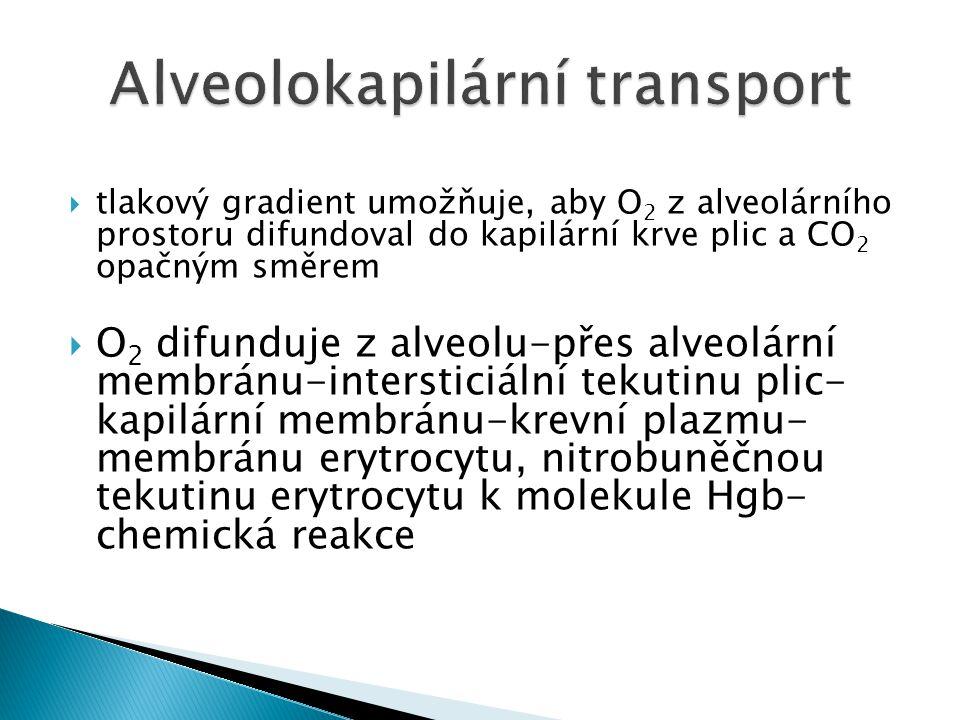  tlakový gradient umožňuje, aby O 2 z alveolárního prostoru difundoval do kapilární krve plic a CO 2 opačným směrem  O 2 difunduje z alveolu-přes al