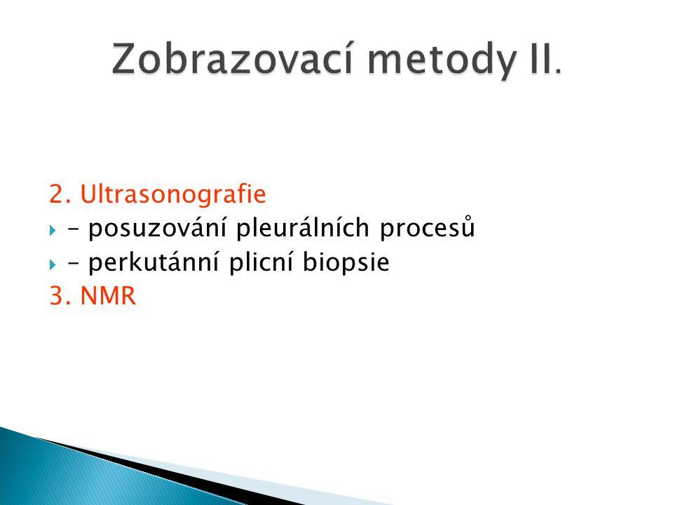 2. Ultrasonografie  – posuzování pleurálních procesů  – perkutánní plicní biopsie 3. NMR