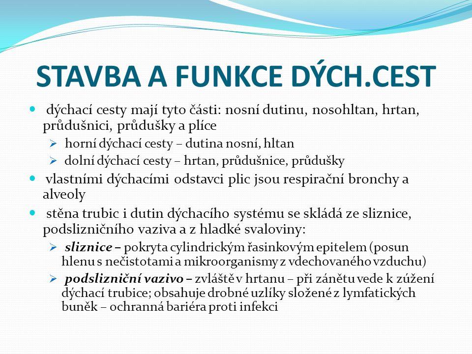 STAVBA A FUNKCE DÝCH.CEST  chrupavčitý nebo kostěný skelet – zabraňuje zúžení dýchacích cest  hrtan, průdušnice a průduška vyvolávají peristaltické pohyby vyvolané smrštěním svaloviny stěny dýchací trubice; zúžení je limitováno pružností prstenčitých a podkovovitých chrupavek  v úsecích, kde chrupavčitá výztuž stěny chybí, může smrštění hladké svaloviny vyvolat dušení (astma)  chrupavky hrtanu jsou kloubně spojeny, svaly pohybující hrtanovými chrupavkami mění napětí hlasivkových vazů a tvar hlasivkové štěrbiny (tvorba hlasu)