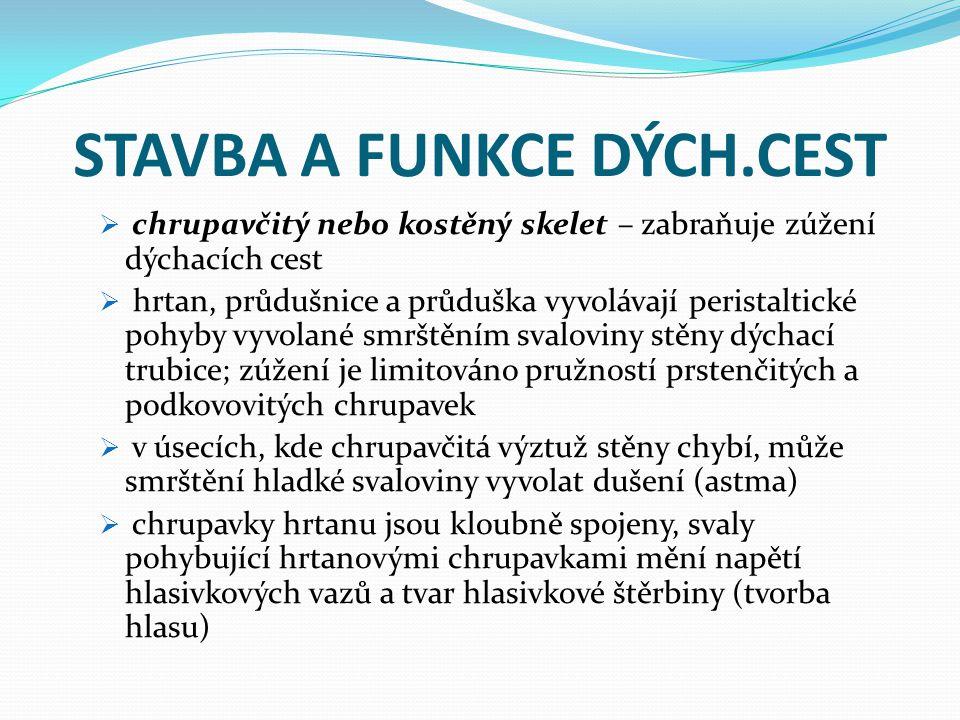 STAVBA A FUNKCE DÝCH.CEST  chrupavčitý nebo kostěný skelet – zabraňuje zúžení dýchacích cest  hrtan, průdušnice a průduška vyvolávají peristaltické