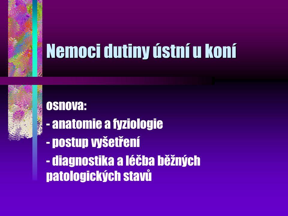 Nemoci dutiny ústní u koní osnova: - anatomie a fyziologie - postup vyšetření - diagnostika a léčba běžných patologických stavů