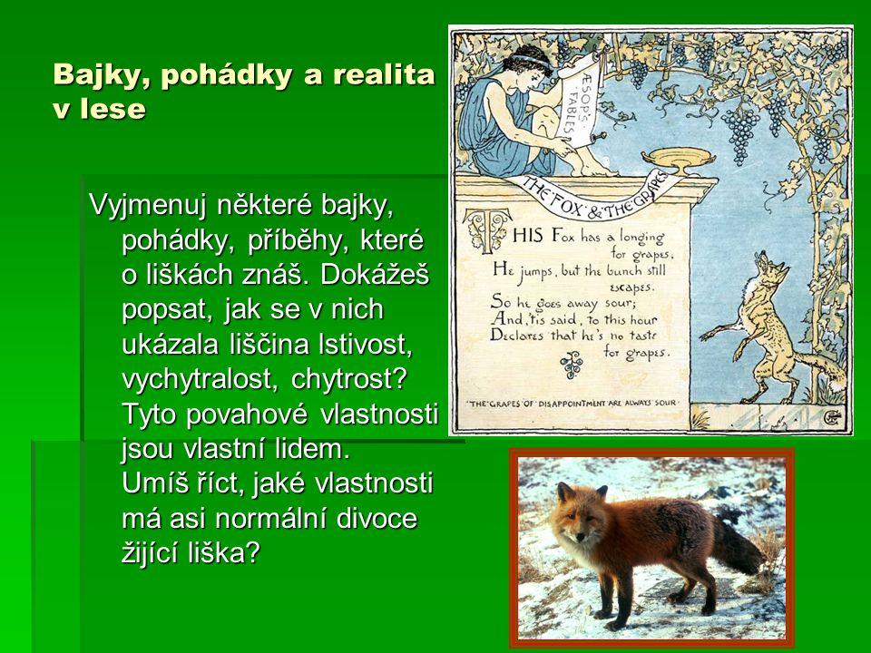 Bajky, pohádky a realita v lese Vyjmenuj některé bajky, pohádky, příběhy, které o liškách znáš.