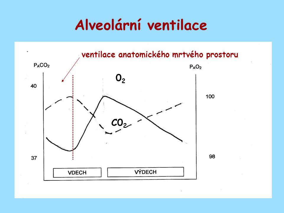 Alveolární ventilace 0202 C0 2 ventilace anatomického mrtvého prostoru