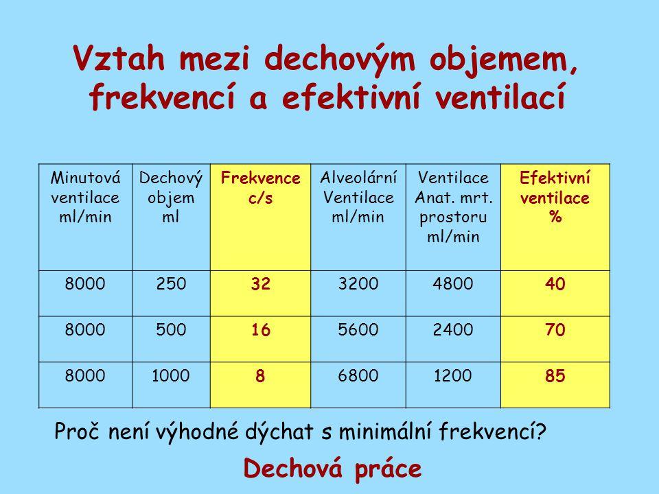 Vztah mezi dechovým objemem, frekvencí a efektivní ventilací Minutová ventilace ml/min Dechový objem ml Frekvence c/s Alveolární Ventilace ml/min Vent
