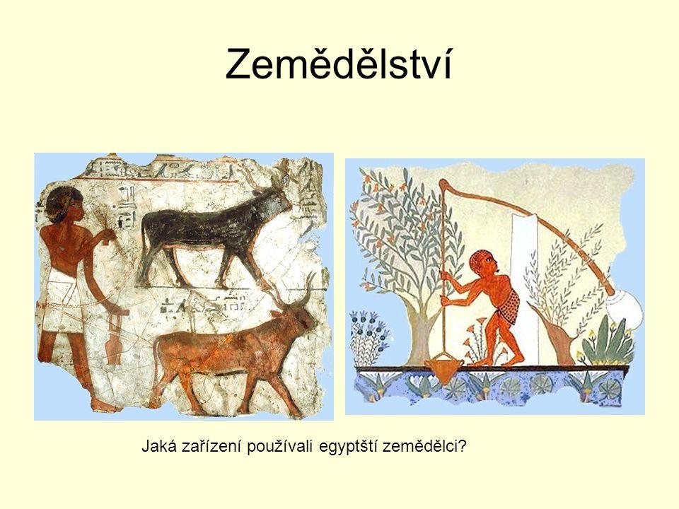 Zemědělství Jaká zařízení používali egyptští zemědělci?