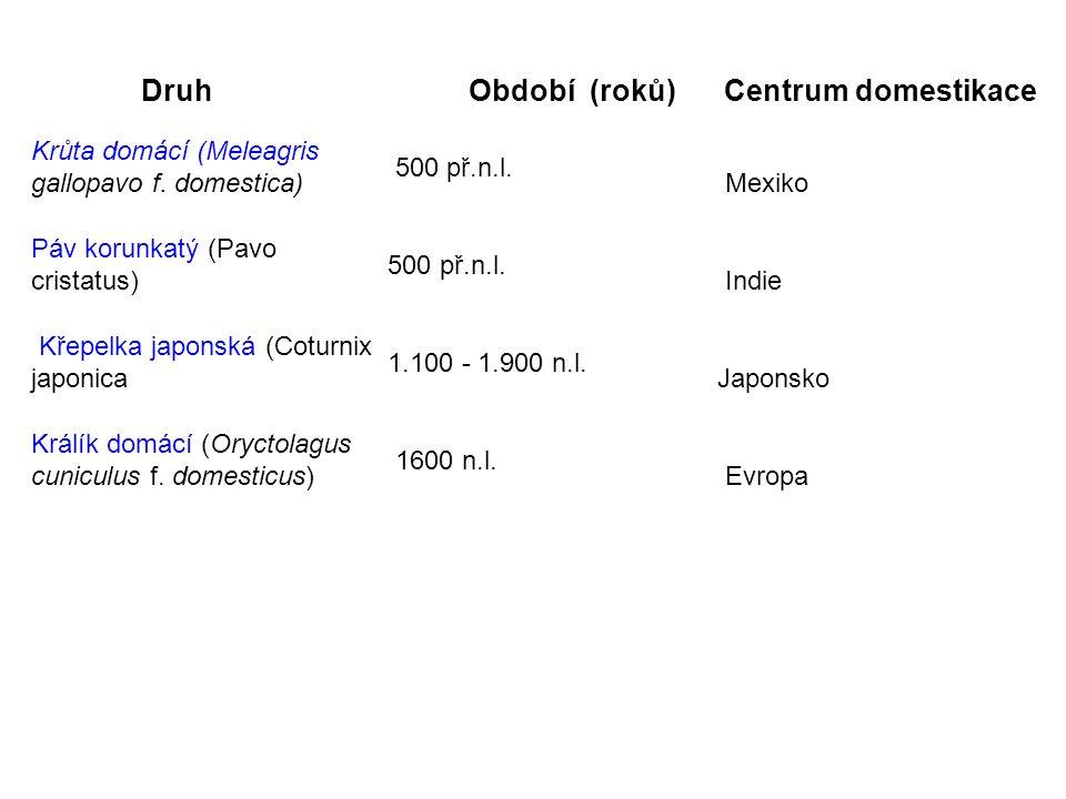 Druh Období (roků) Centrum domestikace Krůta domácí (Meleagris gallopavo f. domestica) 500 př.n.l. Mexiko Páv korunkatý (Pavo cristatus) 500 př.n.l. I