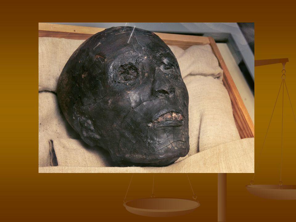 Omyl Všeobecně se tvrdí, že hrobka nebyla vykradena.