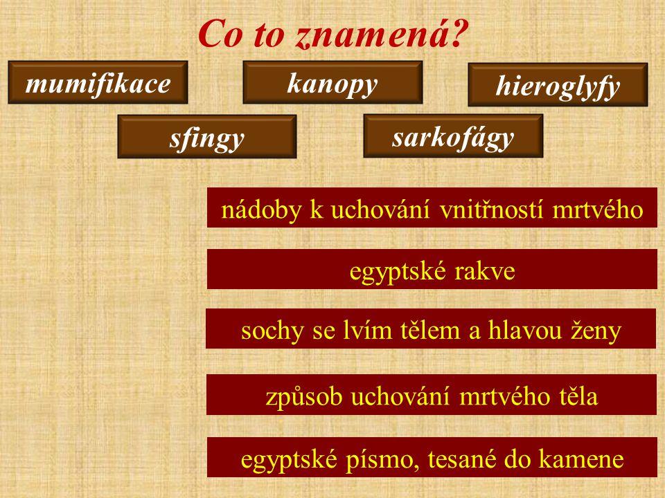 mumifikace sarkofágy kanopy hieroglyfy sfingy Co to znamená.
