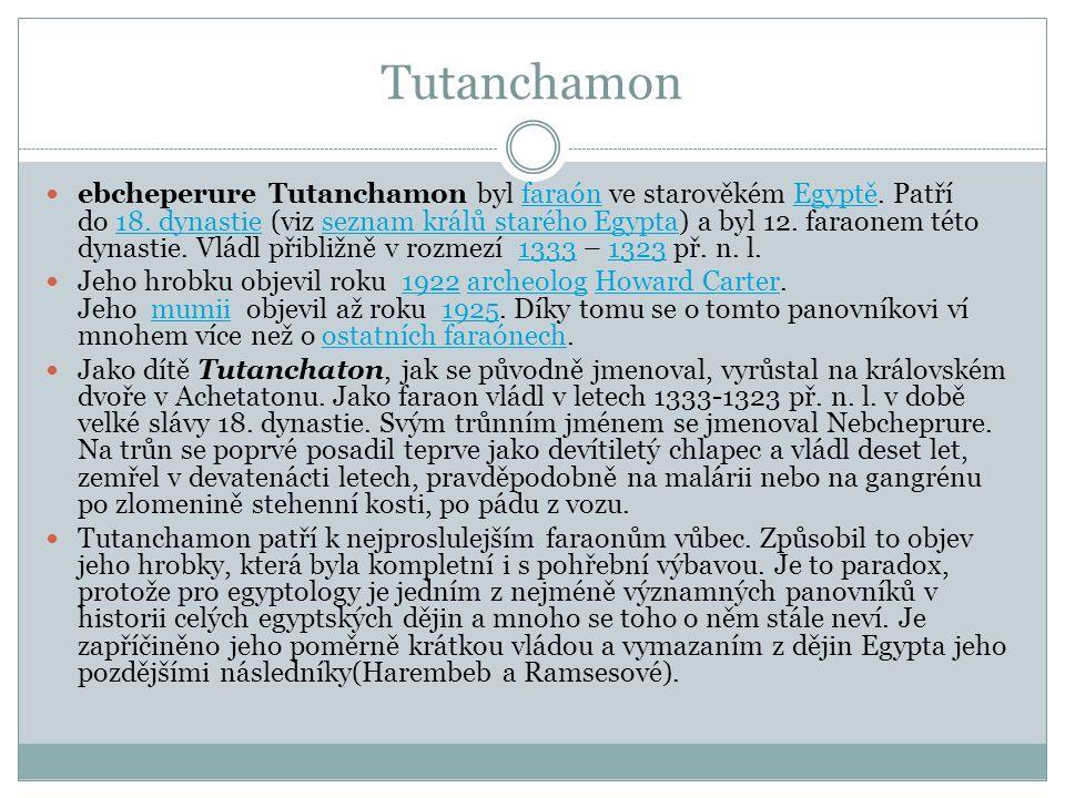 Tutanchamon ebcheperure Tutanchamon byl faraón ve starověkém Egyptě. Patří do 18. dynastie (viz seznam králů starého Egypta) a byl 12. faraonem této d