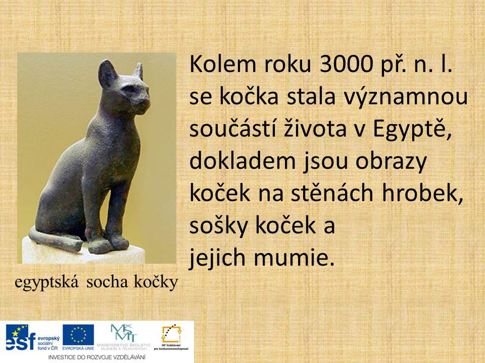 egyptská socha kočky Kolem roku 3000 př. n. l. se kočka stala významnou součástí života v Egyptě, dokladem jsou obrazy koček na stěnách hrobek, sošky