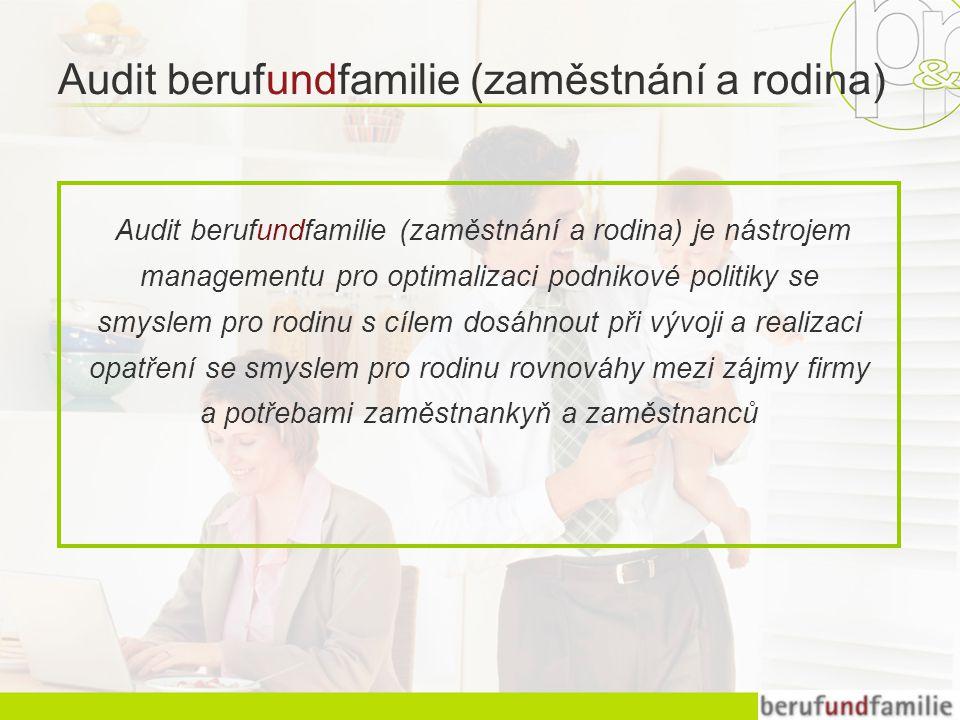 Audit berufundfamilie (zaměstnání a rodina) je nástrojem managementu pro optimalizaci podnikové politiky se smyslem pro rodinu s cílem dosáhnout při vývoji a realizaci opatření se smyslem pro rodinu rovnováhy mezi zájmy firmy a potřebami zaměstnankyň a zaměstnanců Audit berufundfamilie (zaměstnání a rodina)