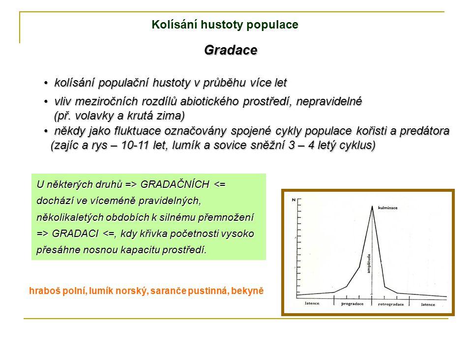 Gradace kolísání populační hustoty v průběhu více let kolísání populační hustoty v průběhu více let vliv meziročních rozdílů abiotického prostředí, ne