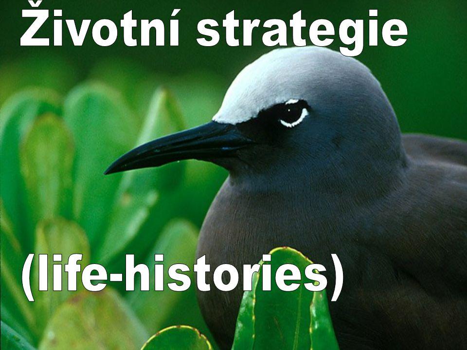 Životní strategie – life histories Všechny organismy se v čase nějakým způsobem vyvíjejí – rodí se, rostou, mění se, rozmnožují se.