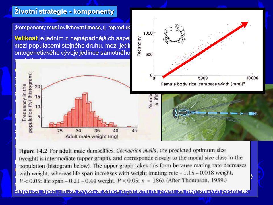 Životní strategie - komponenty Rozmnožovaní (a velikost) délce pre-reprodukčního vývoje semelparie iteroparie Organismy se mohou lišit v délce pre-reprodukčního vývoje.