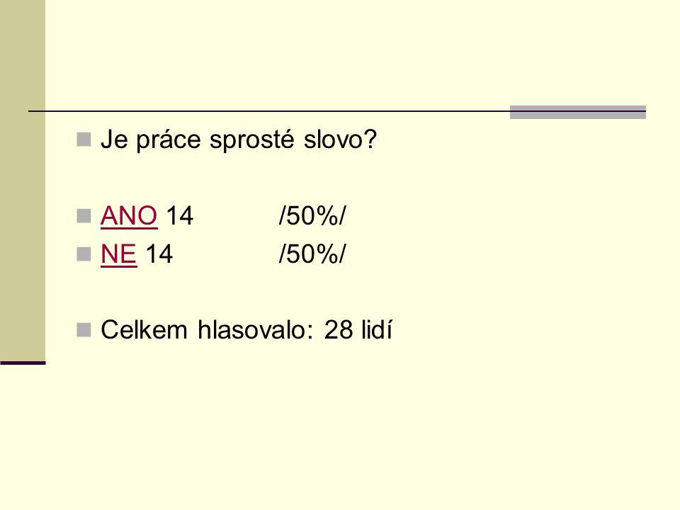 Je práce sprosté slovo? ANO 14/50%/ ANO NE 14/50%/ NE Celkem hlasovalo: 28 lidí