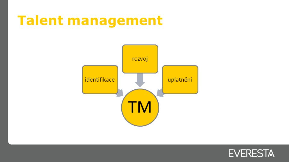Talent management TM identifikacerozvojuplatnění