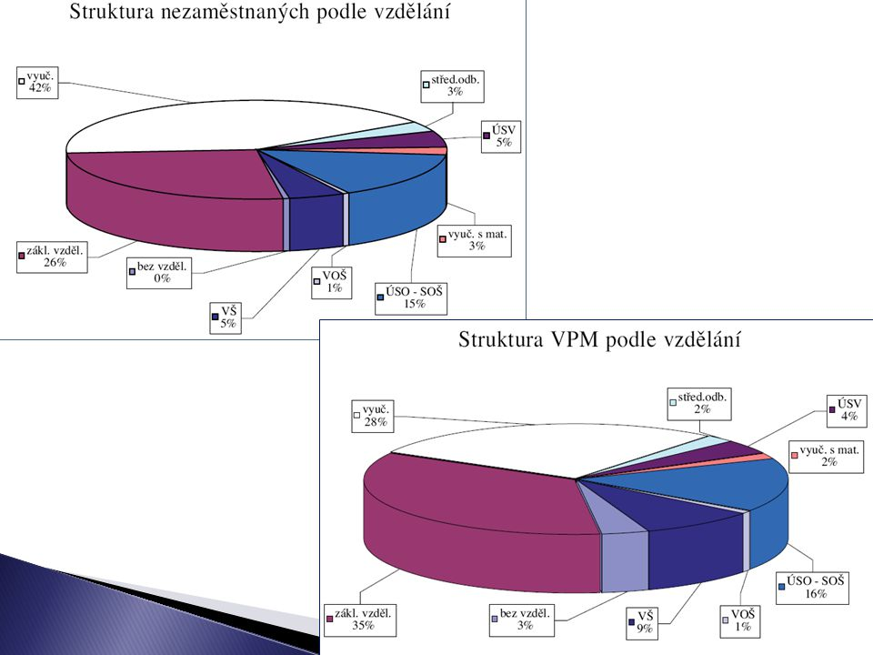 10 Sociální politika I. Jabok, ETF 2010 Michael Martinek18