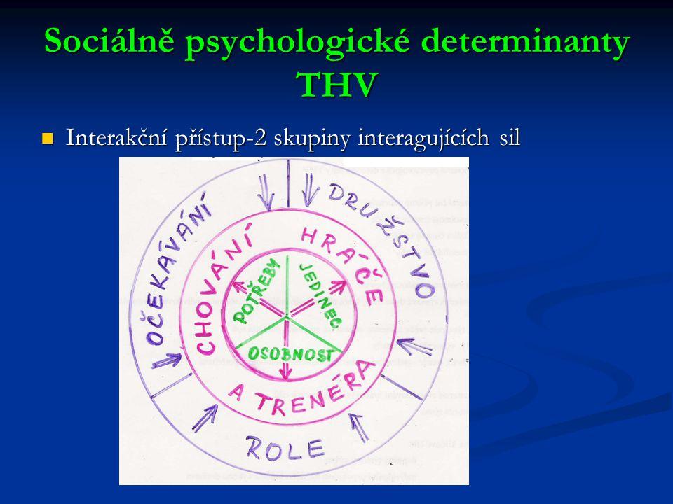Sociálně psychologické determinanty THV Interakční přístup-2 skupiny interagujících sil Interakční přístup-2 skupiny interagujících sil
