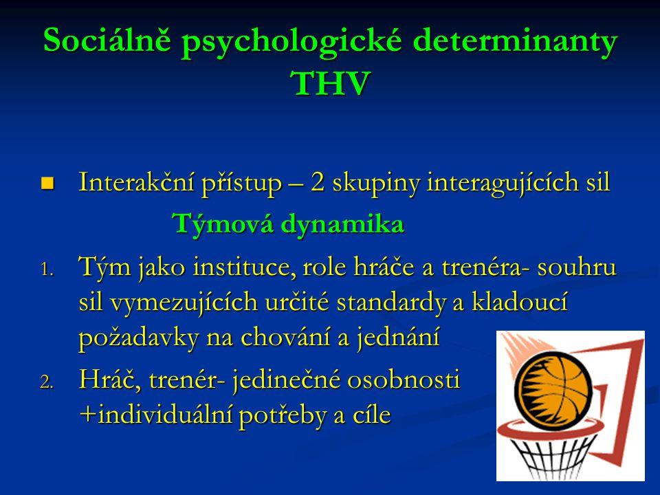 Sociálně psychologické determinanty THV Interakční přístup – 2 skupiny interagujících sil Interakční přístup – 2 skupiny interagujících sil Týmová dyn