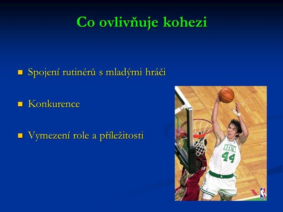 Co ovlivňuje kohezi Spojení rutinérů s mladými hráči Spojení rutinérů s mladými hráči Konkurence Konkurence Vymezení role a příležitosti Vymezení role