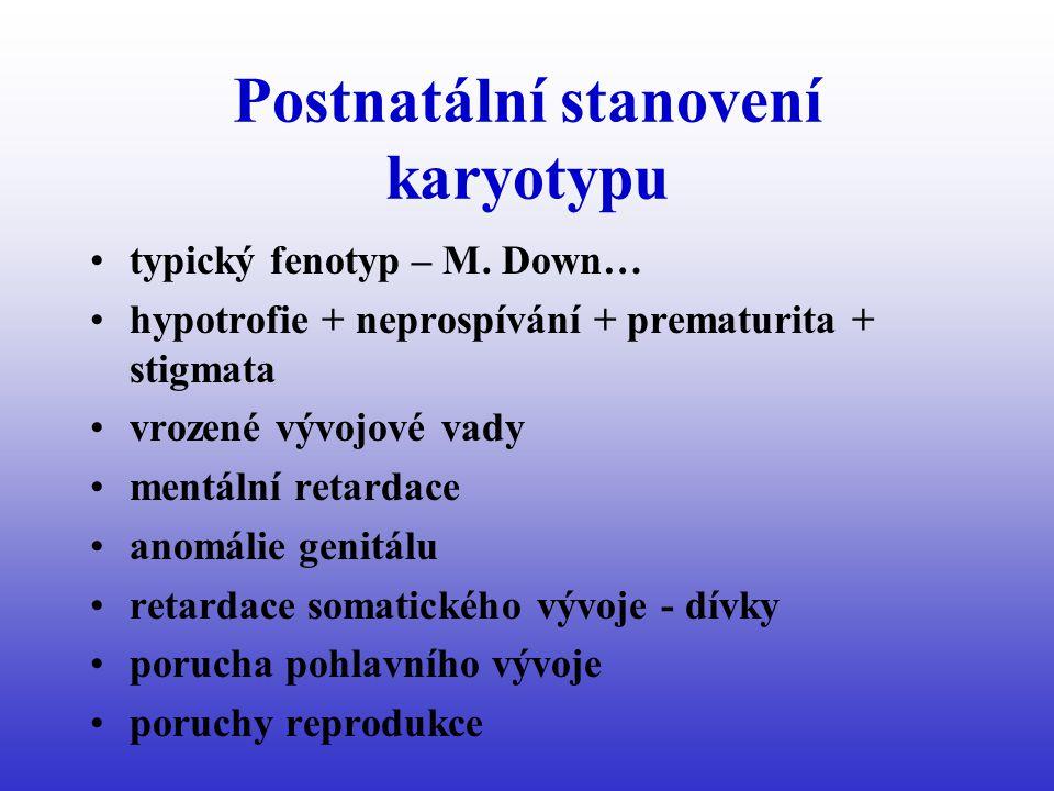 Postnatální stanovení karyotypu typický fenotyp – M.