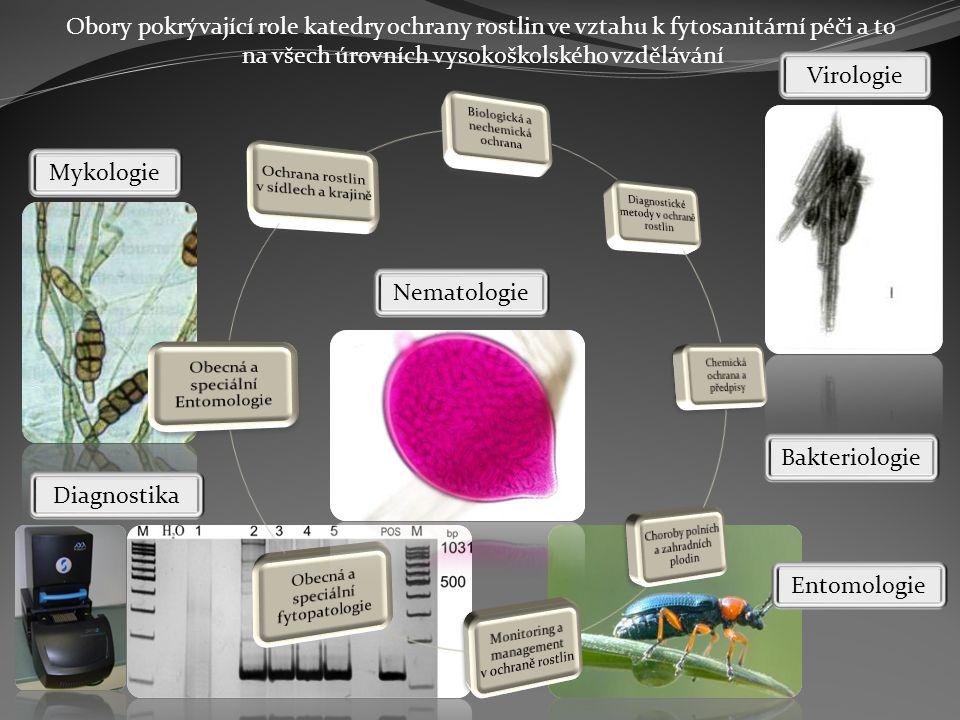 Obory pokrývající role katedry ochrany rostlin ve vztahu k fytosanitární péči a to na všech úrovních vysokoškolského vzdělávání Mykologie Virologie Bakteriologie Entomologie Nematologie Diagnostika