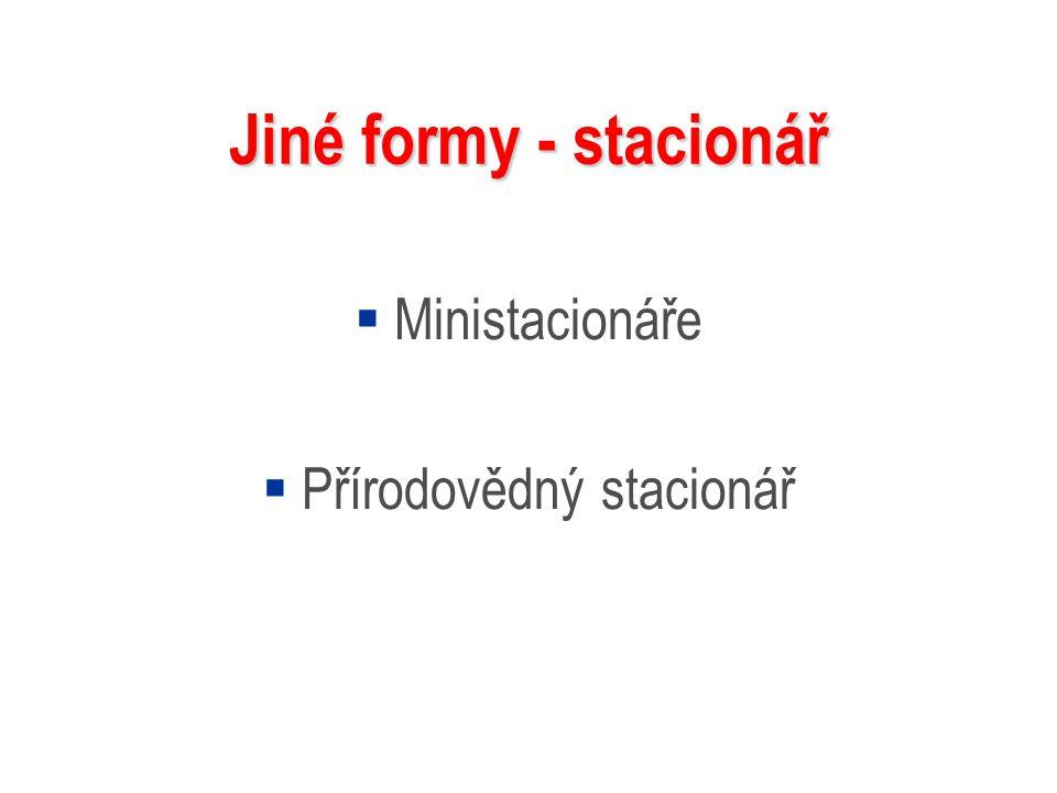 Jiné formy - stacionář  Ministacionáře  Přírodovědný stacionář