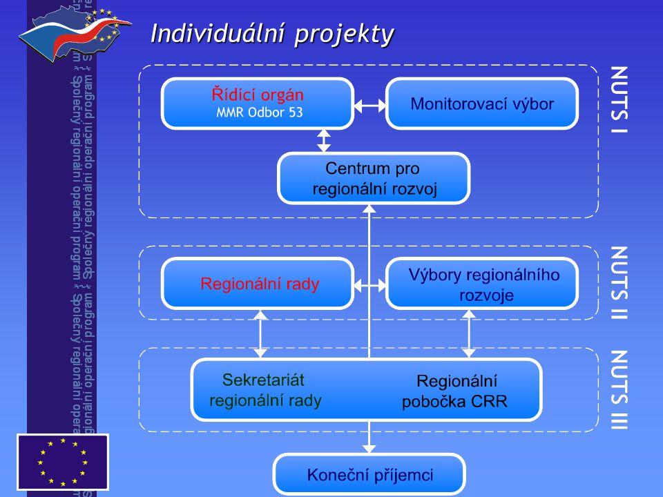 Individuální projekty